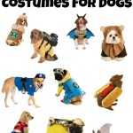 10 Halloween Costumes For Dogs
